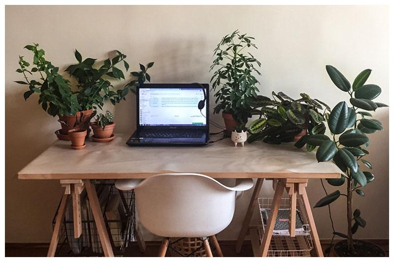 Home Office Internet Plus