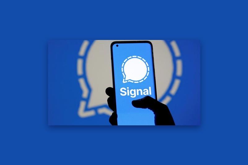 Aplikacja Signal.